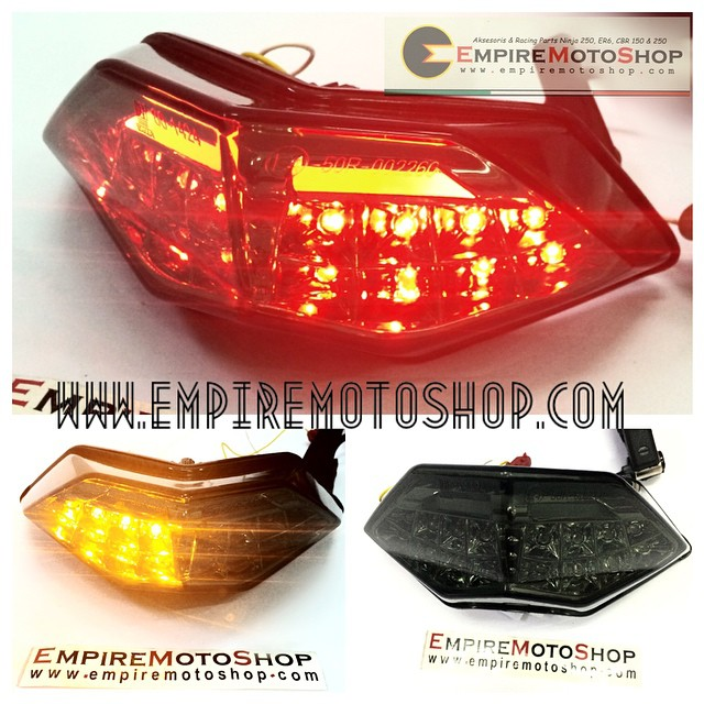 Neon Tail Light Kawasaki Ninja 250 Fi